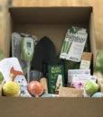 Grewwit Garden Box3